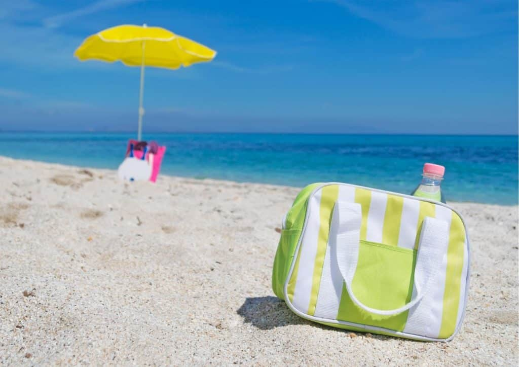 Best Custom Cooler Bags and Insulated Lunch Bags for Summer