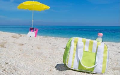 Best Cooler Bags & Insulated Lunch Bags for Summer