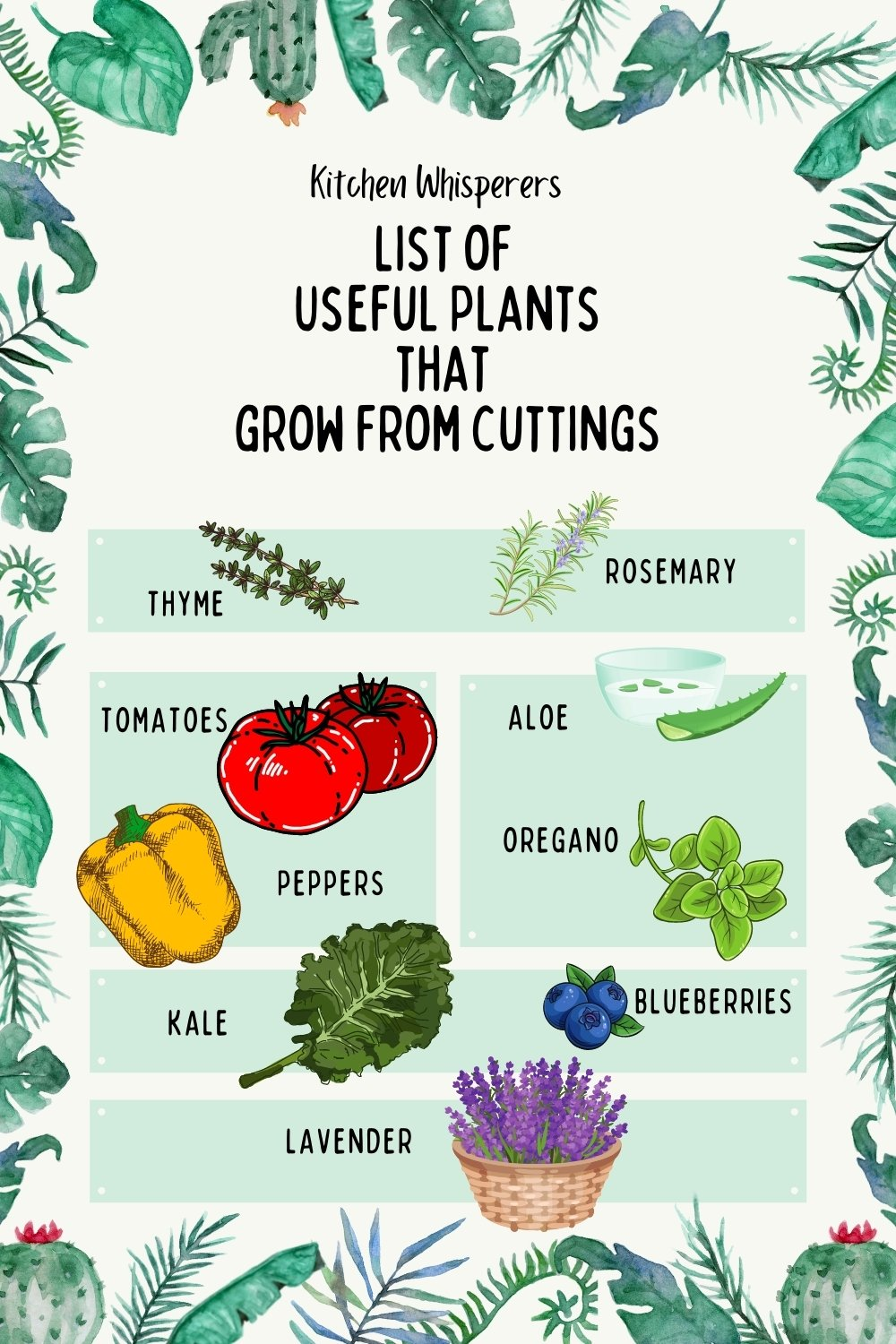 List of plants that grow from cuttings