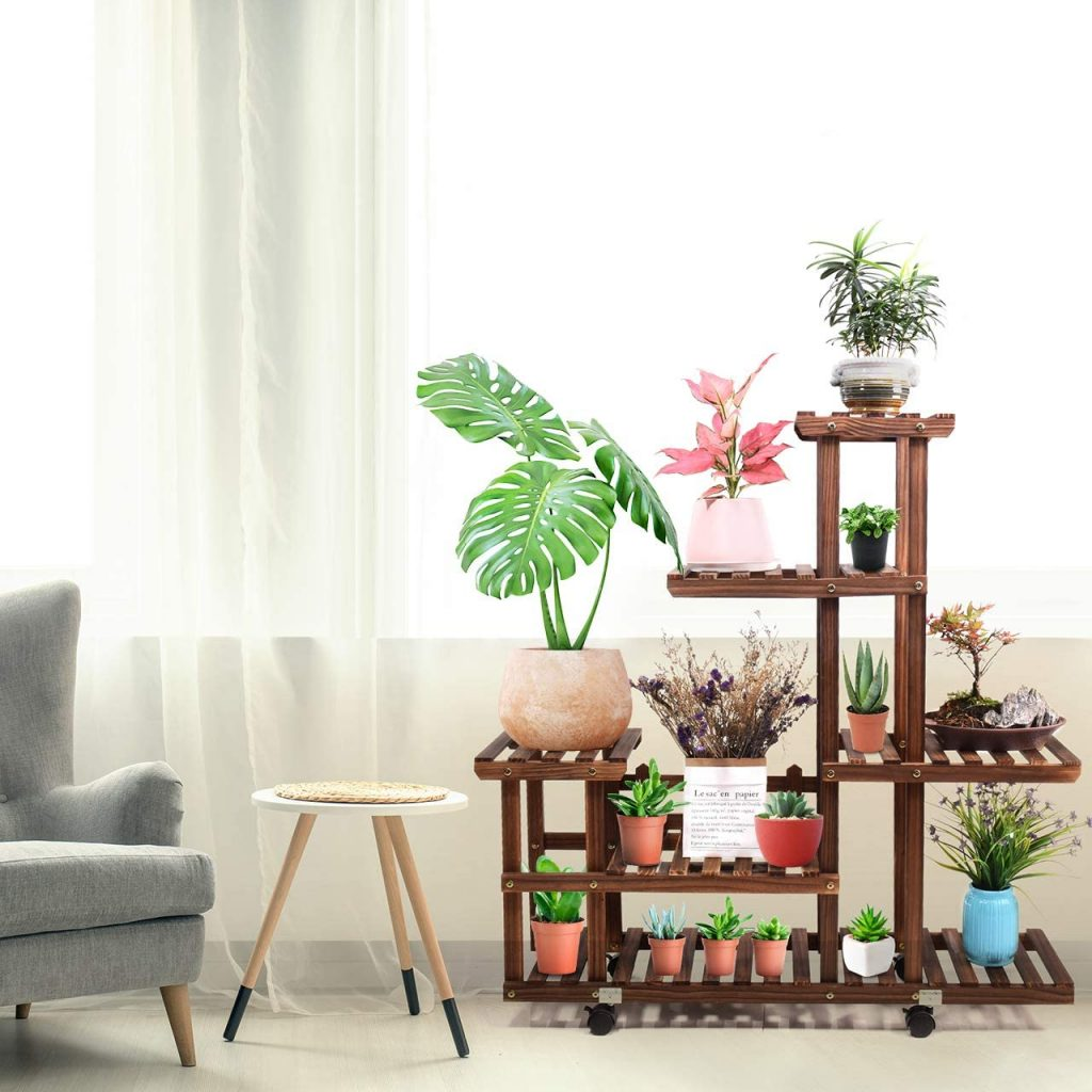 Wood Plant propagation station Indoor Outdoor